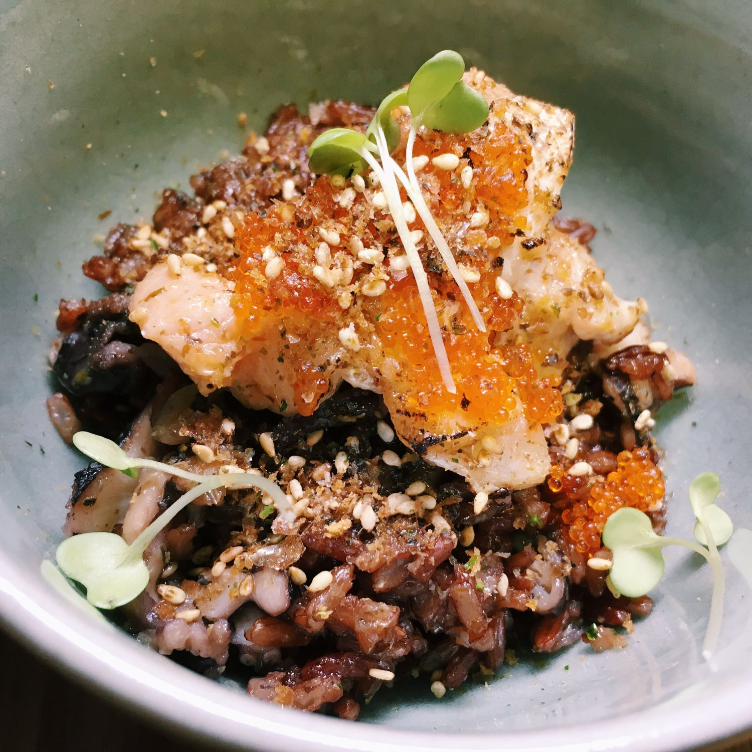 Salmon Red Rice and Baby Octopus Donburi - Wild Rocket