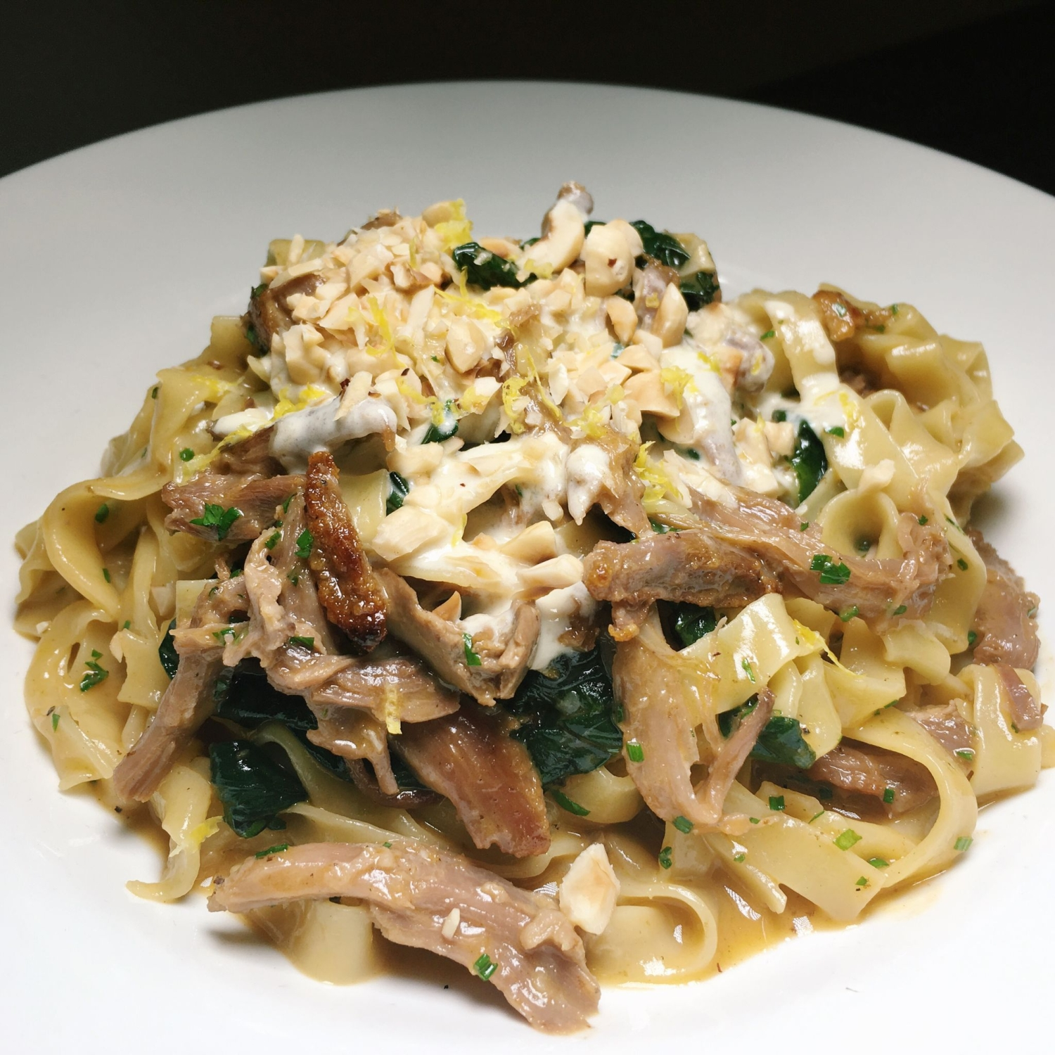 Duck Confit Pasta - South Union Park