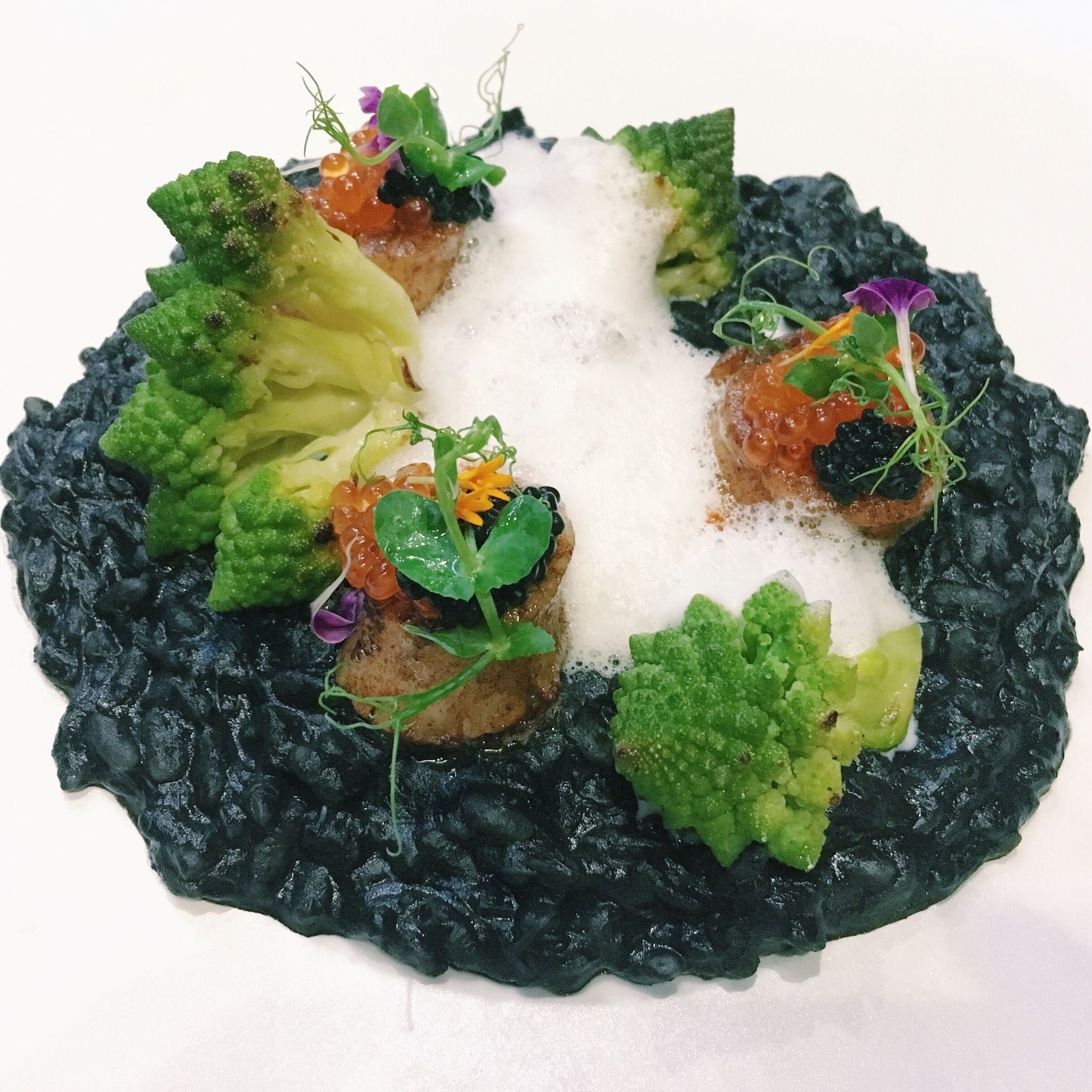 Squid Ink Scallops Risotto - Horizon Bistronomy (Alexandra)