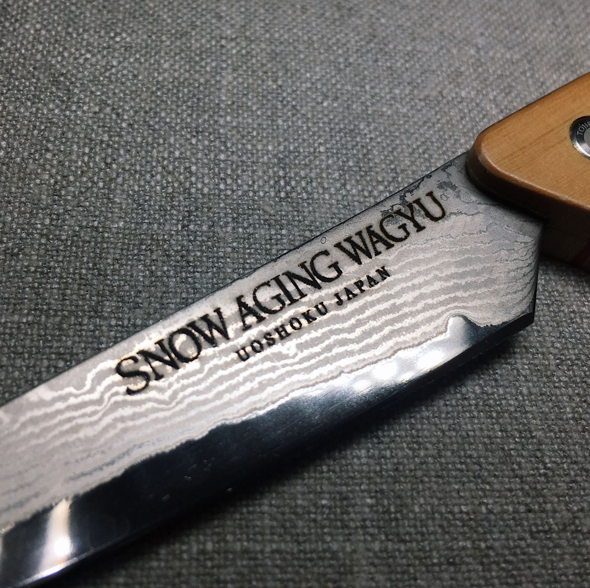 Snow-aged Full Blood Wagyu A4 - Origin Grill & Bar