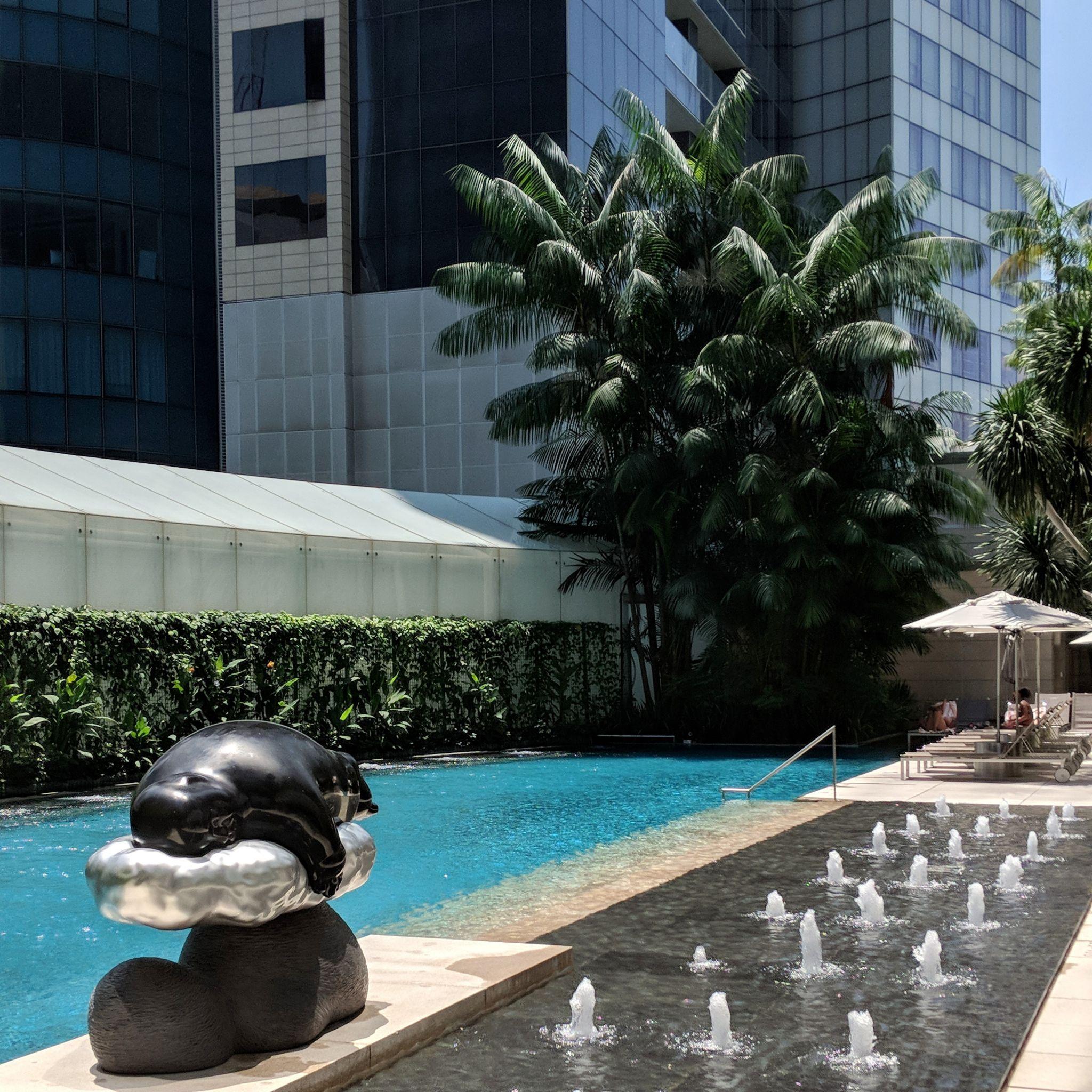 the st. regis singapore pool