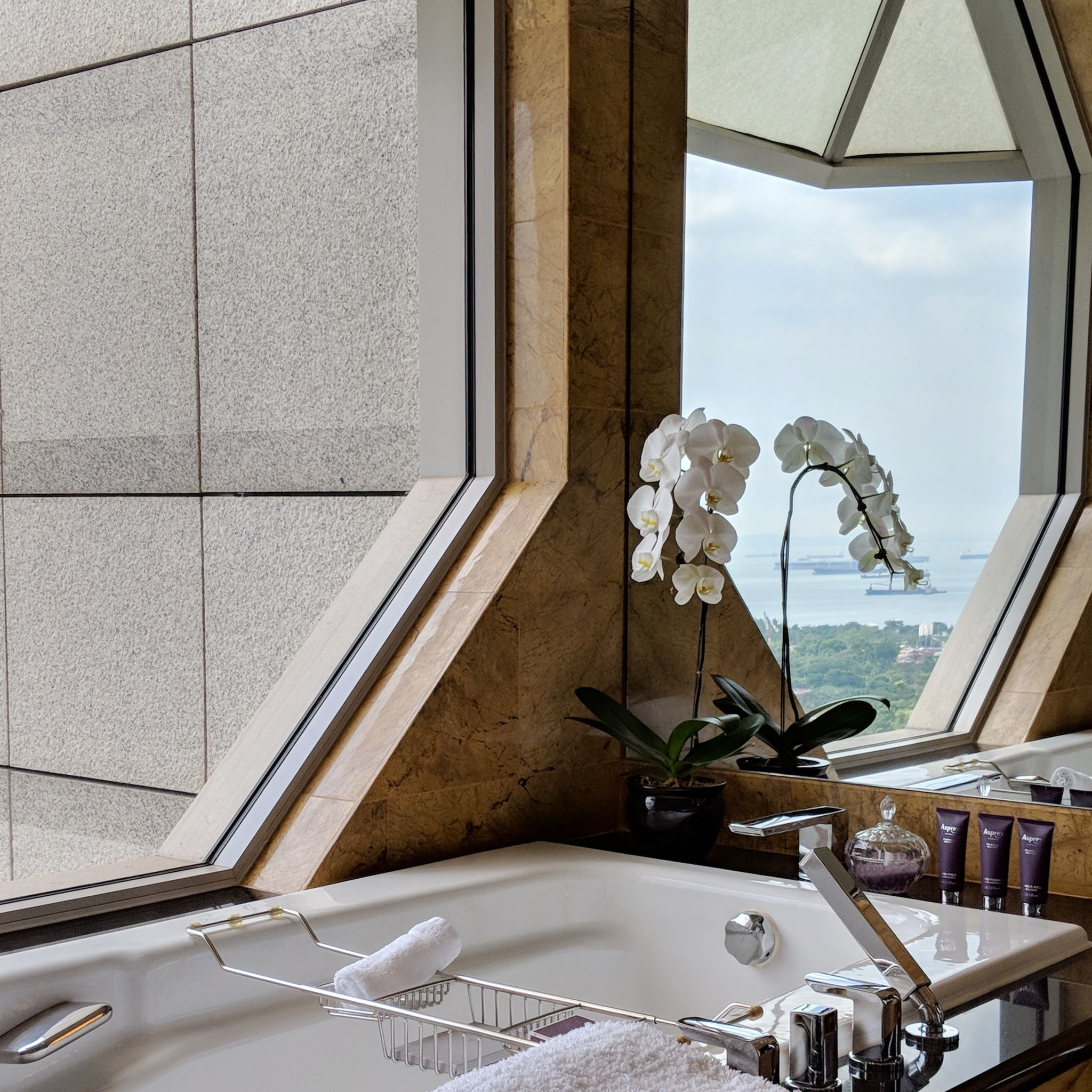 the ritz-carlton, millenia singapore one-bedroom millenia suite bathtub
