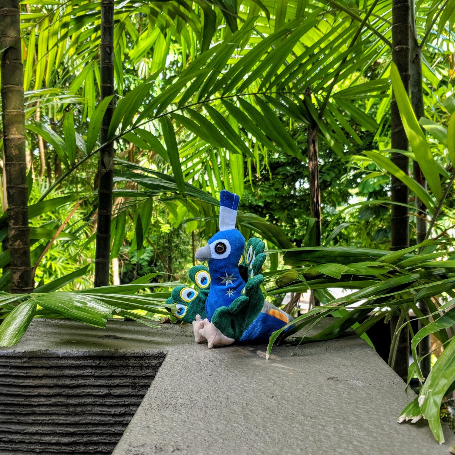 capella singapore peacock mascot plush