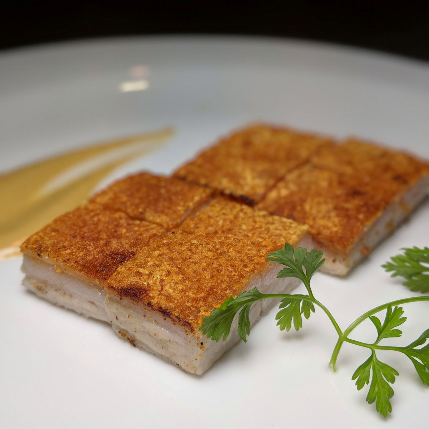 Four Seasons Hotel Singapore Jiang-Nan Chun Crispy Pork Belly