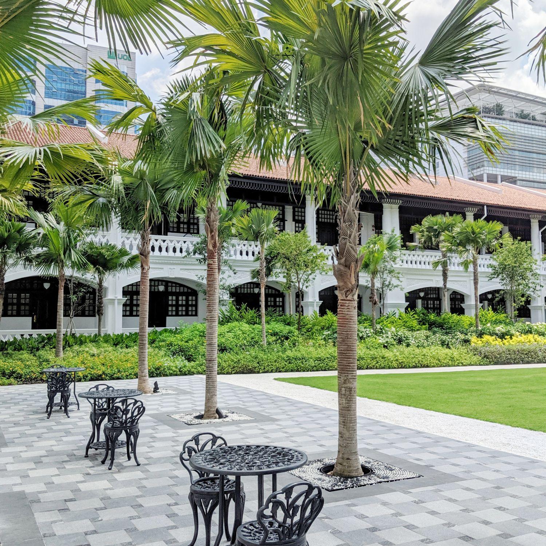 raffles hotel singapore palm court