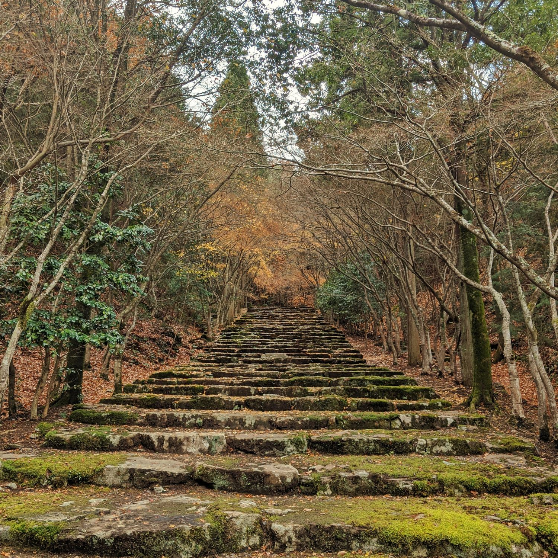 aman kyoto tengamine garden