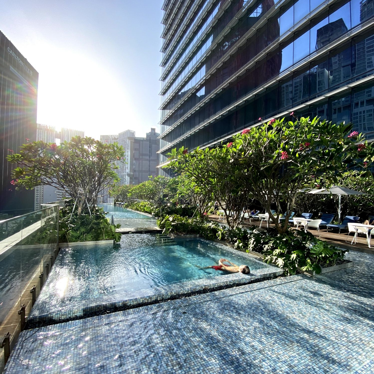 sofitel singapore city centre swimming pool
