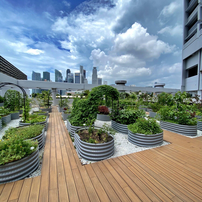 PARKROYAL COLLECTION Marina Bay Singapore Garden