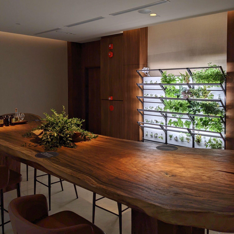 Oasia Resort Sentosa Wellness Lounge
